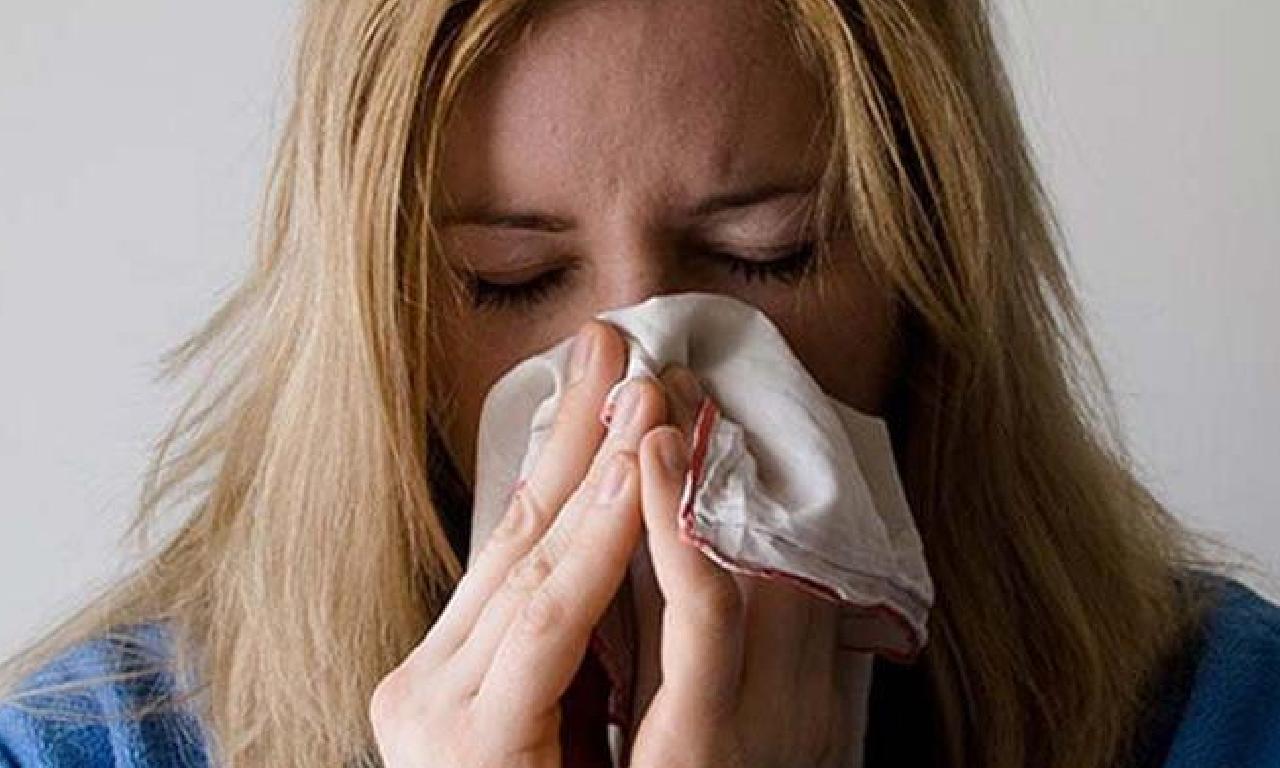 Grip virüsünü tesirsiz ağıl musil 2 yosun