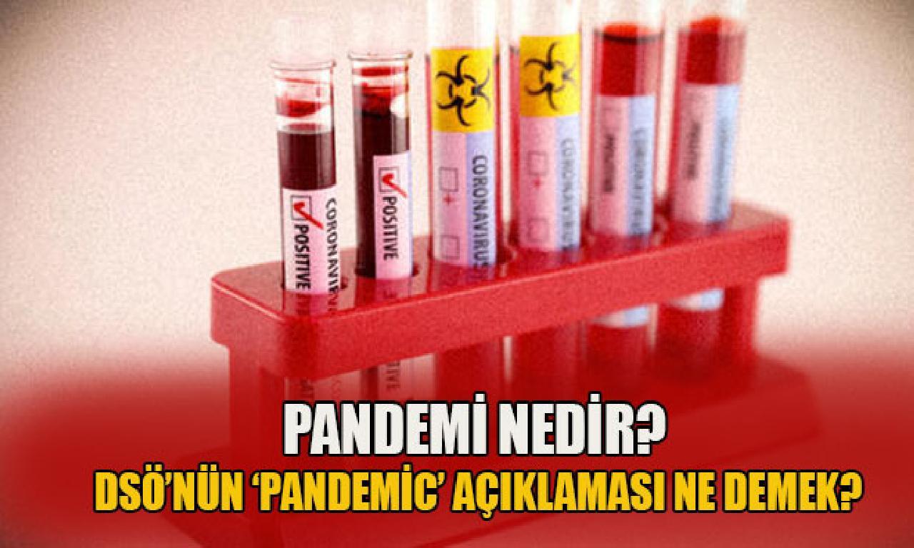 Pandemi nedir? DSÖ'nün 'pandemic' açıklaması hangi demek?
