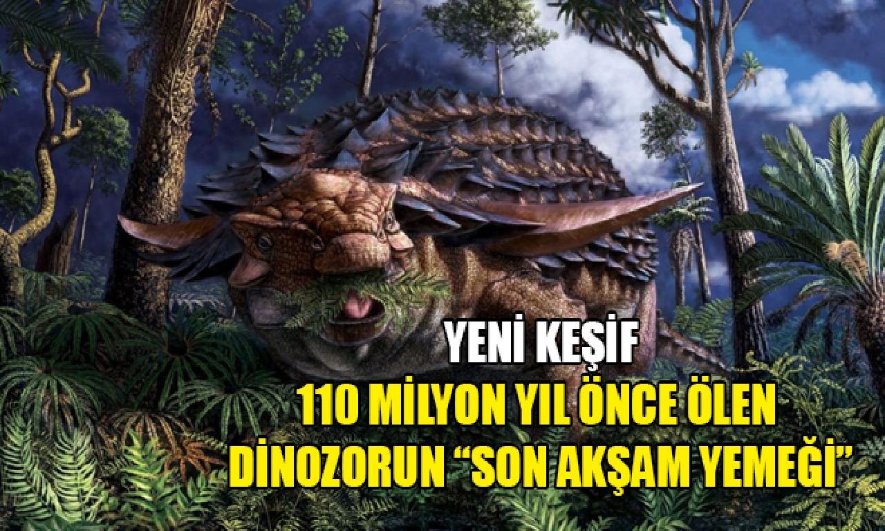 """110 1000000 yıl önce ölen dinozorun """"son akşam yemeği"""""""