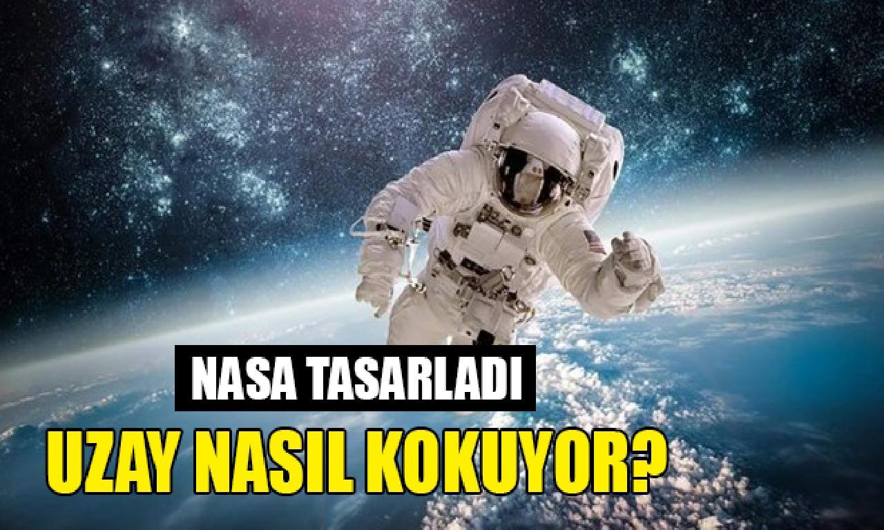 NASA'dan uzayın demli Dünya'ya musil parfüm