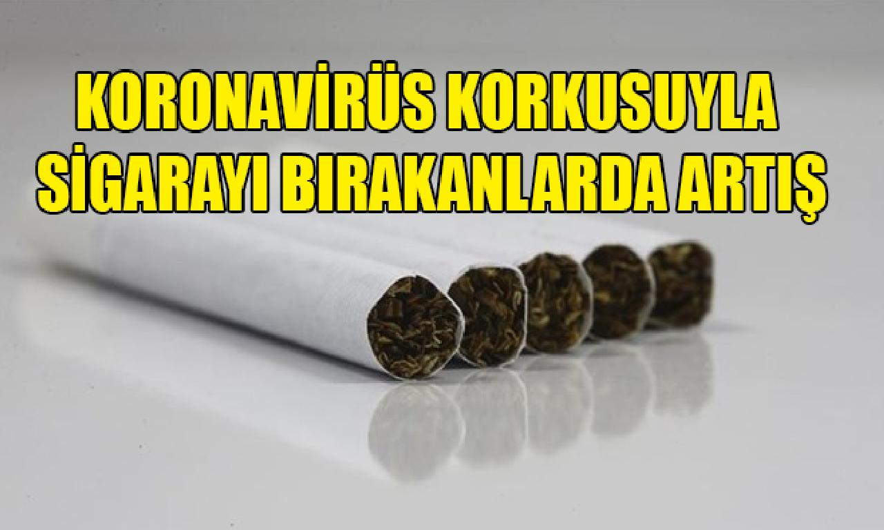 Koronavirüs korkusuyla cıgara bırakma oranı arttı
