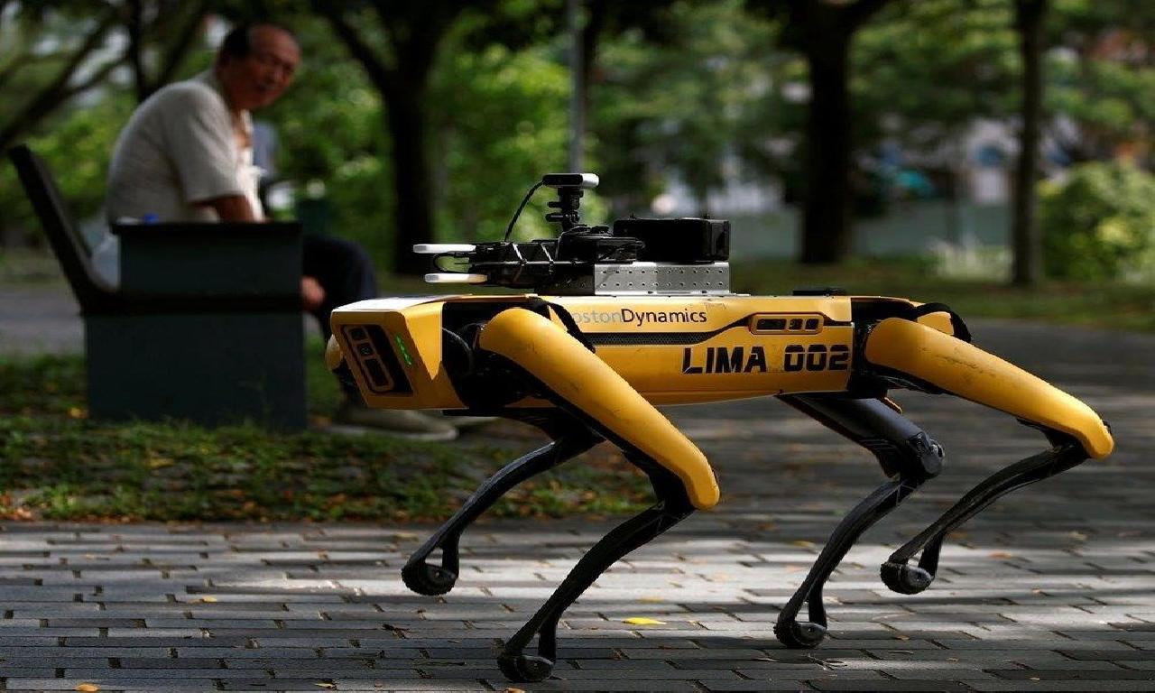 Boston Dynamics, kuş robotlarıyla yol sektörüne adım atıyor