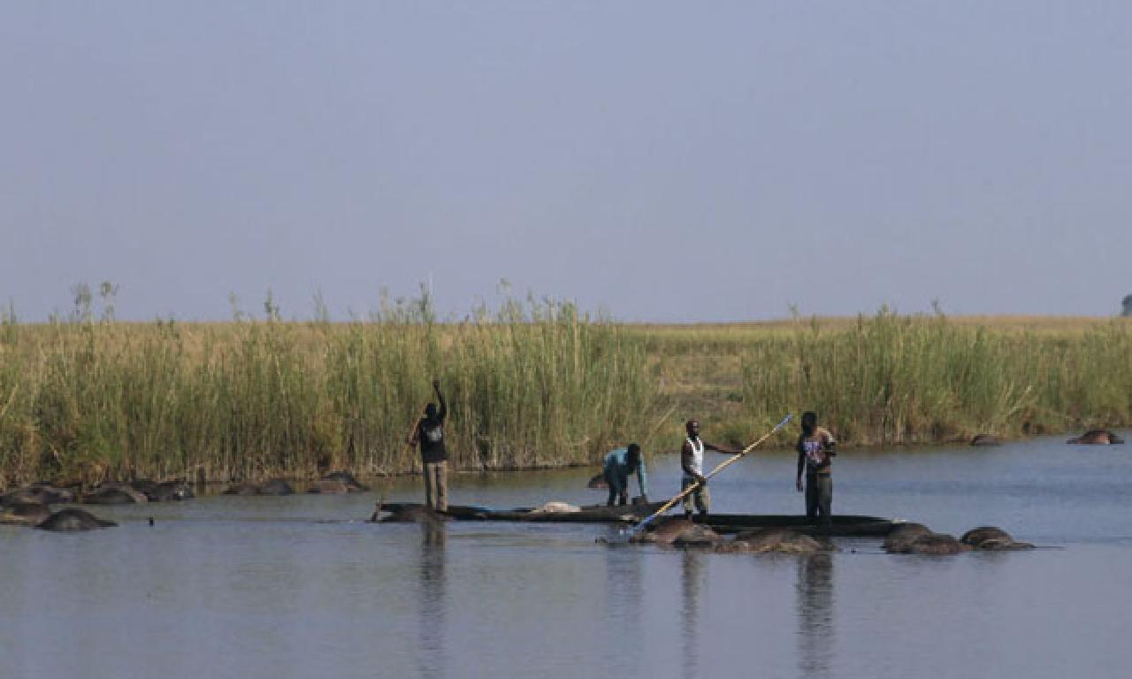 Araştırmacılara göre çağdaş insanların anavatanı Botsvana