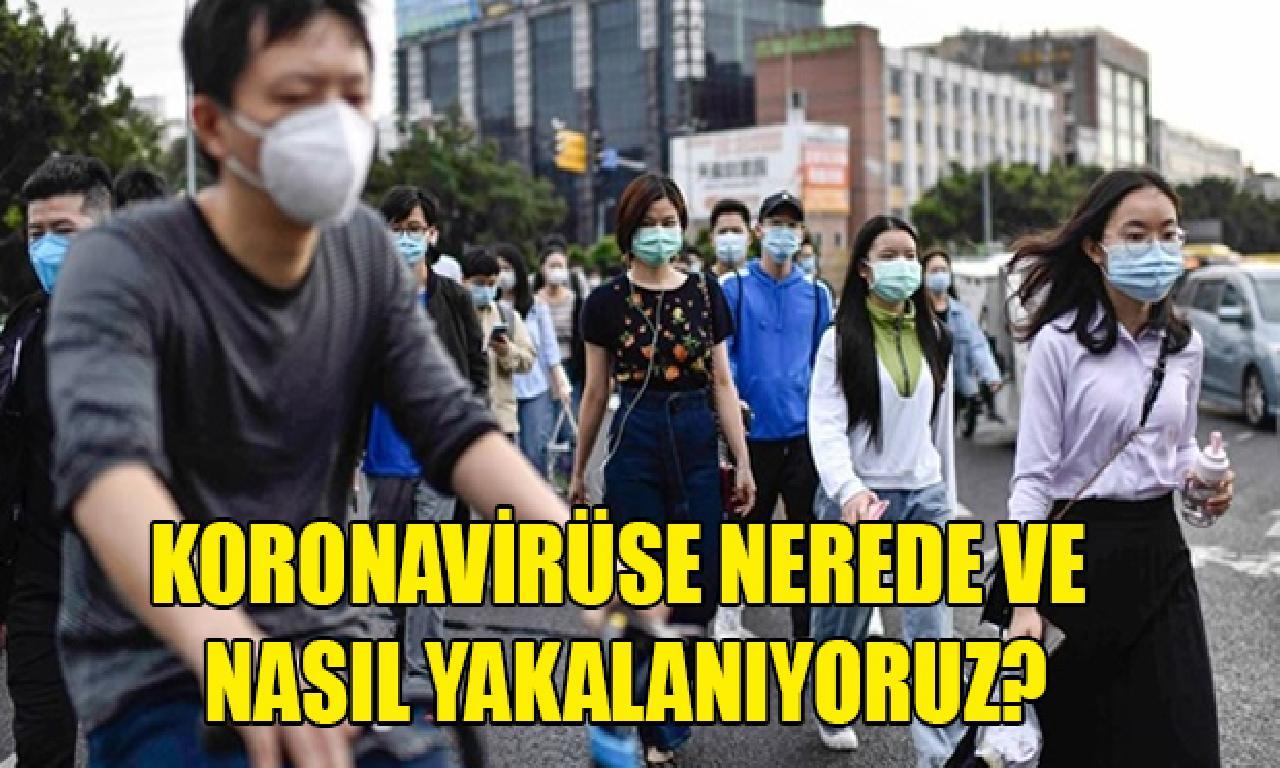 Koronavirüse nasıl dahi imkansızlık yakalanıyoruz?