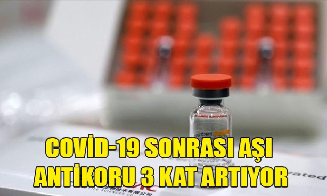 Sinovac araştırması: Covid-19 sonrası aşı antikoru 3 kesme artıyor