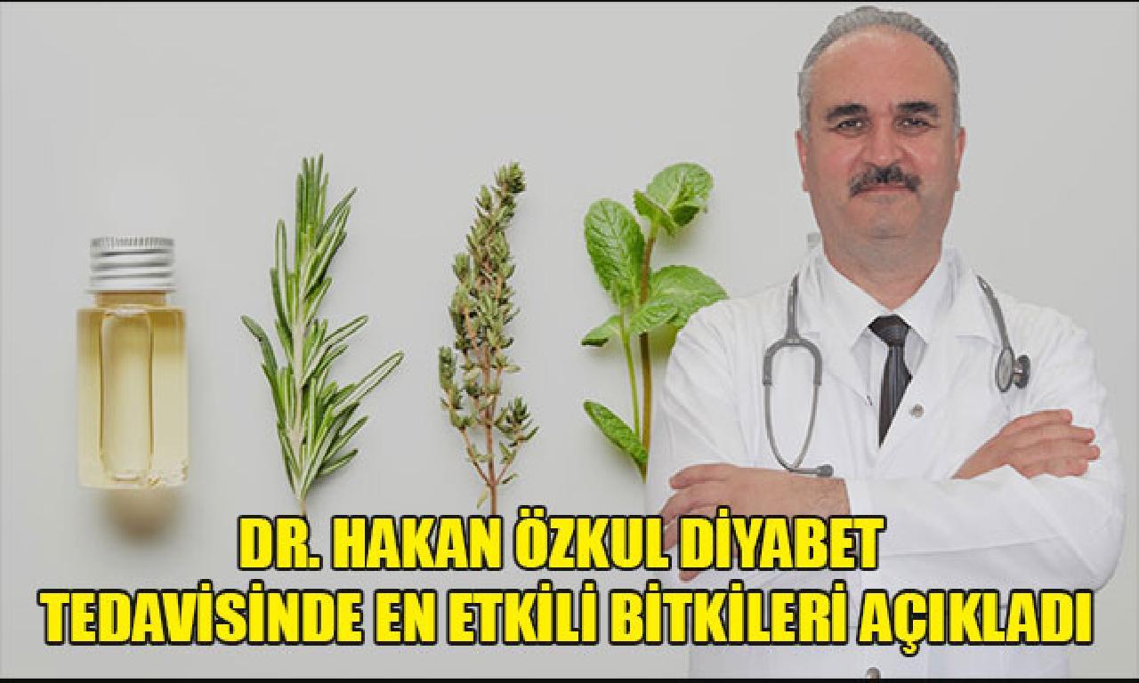 Dr. Hakan Özkul Diyabet Tedavisinde En Etkili Bitkileri Açıkladı