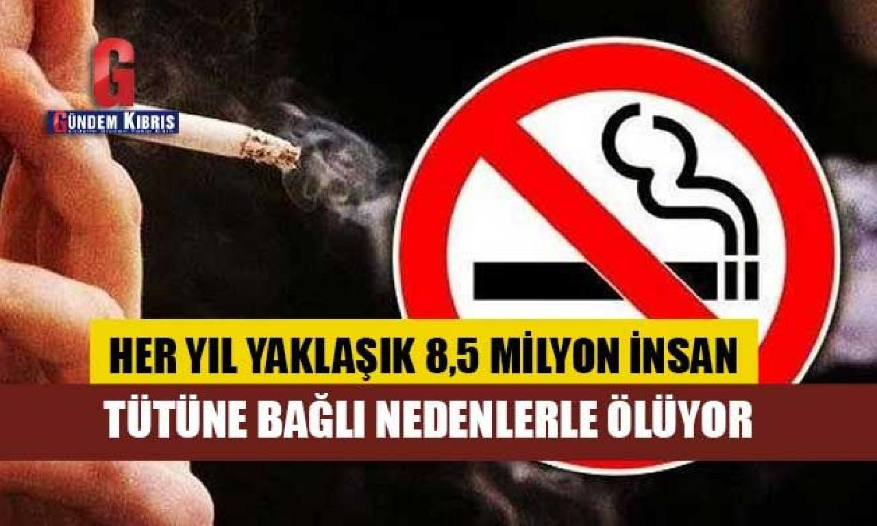 Her yıl yaklaşık 8,5 1000000 memelilerden tütüne bağlı nedenlerde ölüyor
