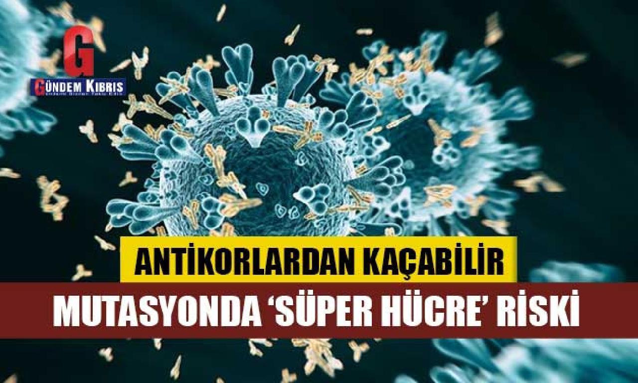"""Corona virüsün mutasyonları, """"süper hücreler"""" aracılığıyla yayılarak antikorlardan kaçabilir"""