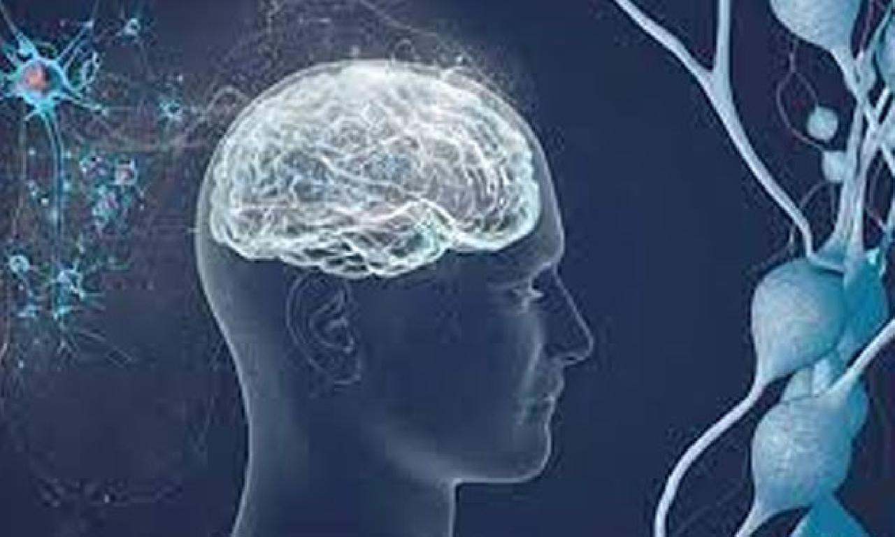 Beyin dahi hafızayı güçlendirecek üç tavsiye!