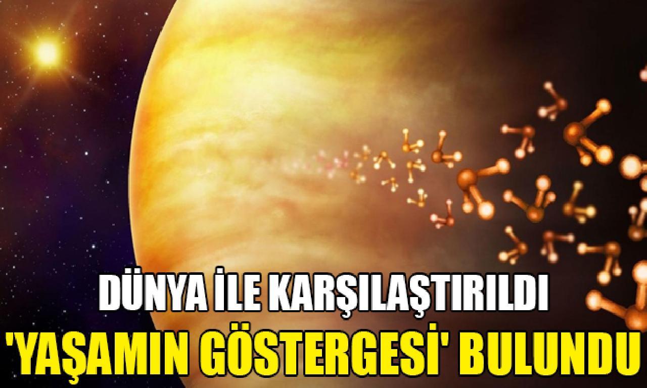 Yaşamın göstergesi fosfin gazı bağcıklı Venüs'te sutaşı mevcut mı? Bilim insanları yanıtladı